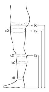 Pontos medida da perna
